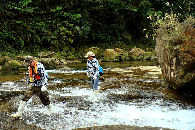 【西表島・トレッキング】秘境あり、ジャングルあり!西表島縦断・スペシャルツアー