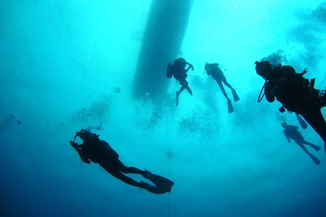 【沖縄・ファンダイビング】青の洞窟やサンゴの群生が楽しめるファンダイビングプラン
