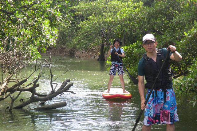 【石垣島・スタンドアップパドル】人気急上昇のマングローブSUP体験ツアー