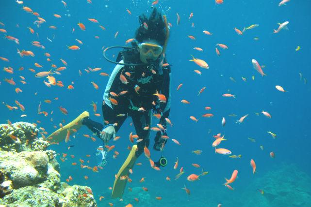 【竹富島・ダイビング&ガイドツアー】美ら海と美ら島を満喫!体験ダイビング&竹富島観光で癒やされよう