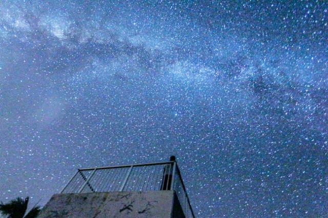 【沖縄県西表島・星空ナイトツアー】夜の西表島は神秘の世界!星明かりをあびて歩こう