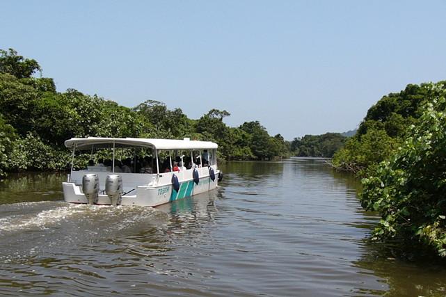 【沖縄・西表島・バスツアー】大人気スポット!仲間川・由布島を効率よくめぐります