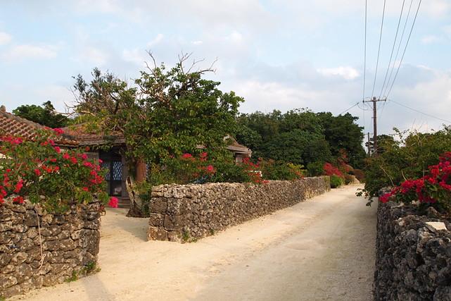 【沖縄・竹富島・レンタルサイクル】レンタルサイクルで、自由に観光!竹富島さんさんコース