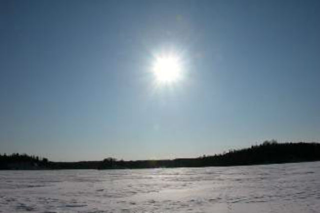 【北海道・根室・ネイチャーウォッチング】野鳥と太古の森。奇跡の場所、春国岱