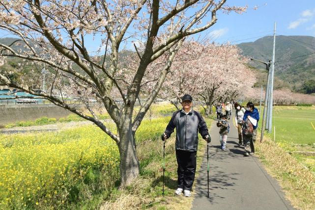 【静岡・ウォーキング・期間限定】のどかな田んぼ道を行く、花畑ノルディックウォーク!