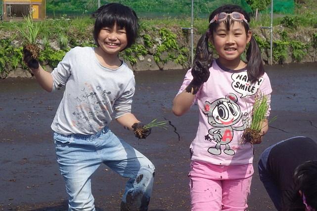 【静岡・農業体験】小学生にぴったり!里山の暮らしに学ぶ農業体験