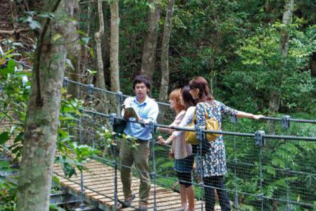【沖縄県国頭村・自然体験】やんばる学びの森で「川と森まるごと探検隊」に参加しよう!
