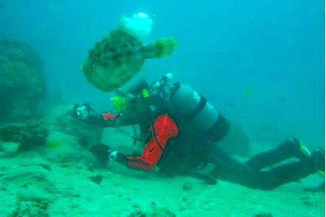 【愛媛・ダイビング】わくわくドキドキ、サバイバル気分!瀬戸内海・無人島体験ダイビング