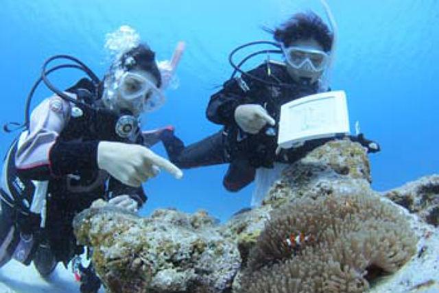【広島県・スペシャルティダイバーコース】世界中の海を渡りたい方へ!本格的なダイバーを目指せます