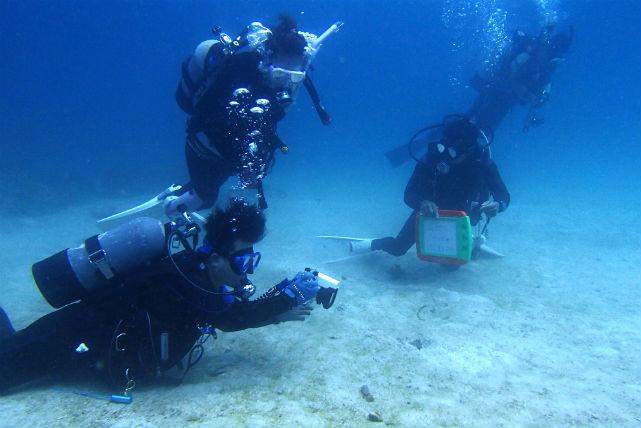 【広島市・アドバンスドダイバー】水深30メートルの世界へ!アドバンスド・オープンウォーターダイバー