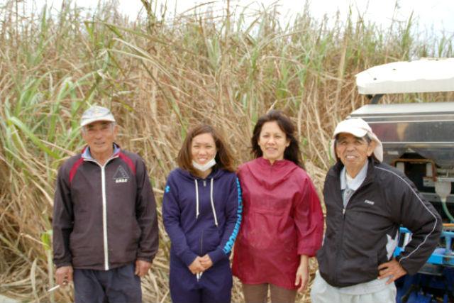 【沖縄やんばる・沖縄文化体験】おじいに教わる!サトウキビ農家でお手伝い1日プラン