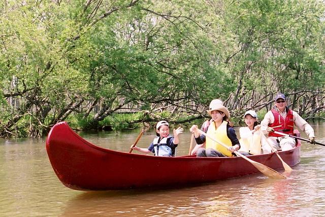 【釧路・カヌー】人気ナンバーワン!釧路湿原を満喫する塘路湖~細岡ツーリングプラン