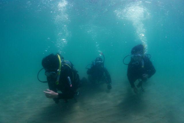 【島根県大田市・ファンダイビング】海の魅力を最大限満喫!ボートダイビング