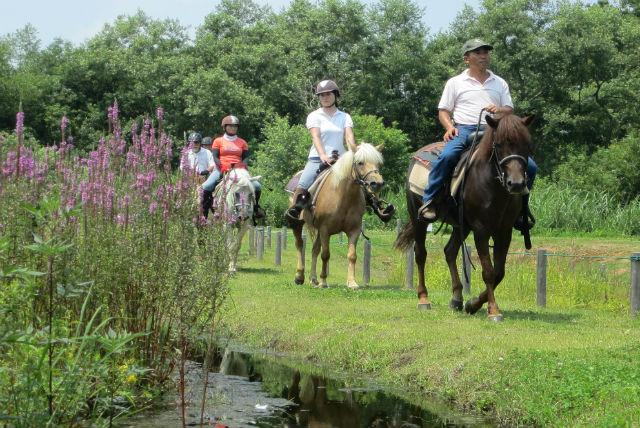 【宮城蔵王・乗馬体験】高台から太平洋を一望!馬に乗って梨園をポクポクお散歩体験