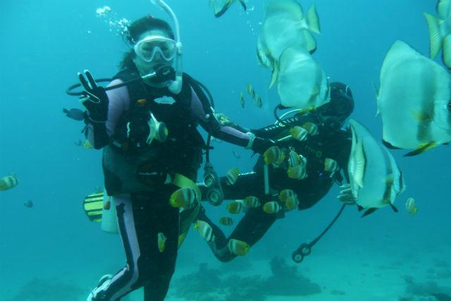 【香川・高松市・体験ダイビング】初めての体験ダイビング!四国の名スポットへとお連れします