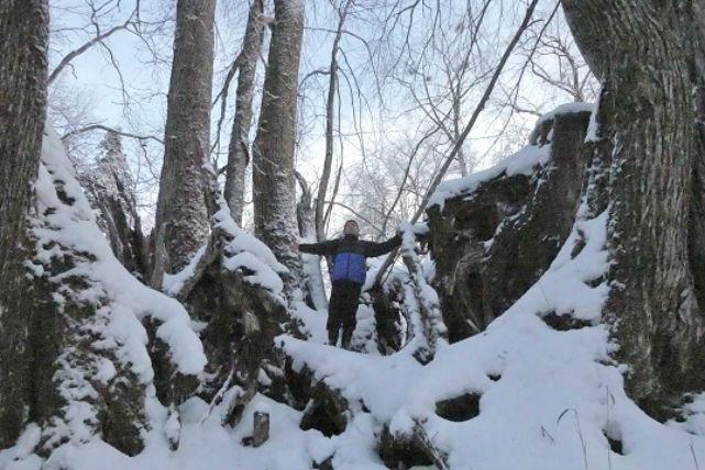 【北海道・支笏湖・スノーシュー】樹齢300年の巨木!湖畔の森を歩こう!(温泉半額特典付)