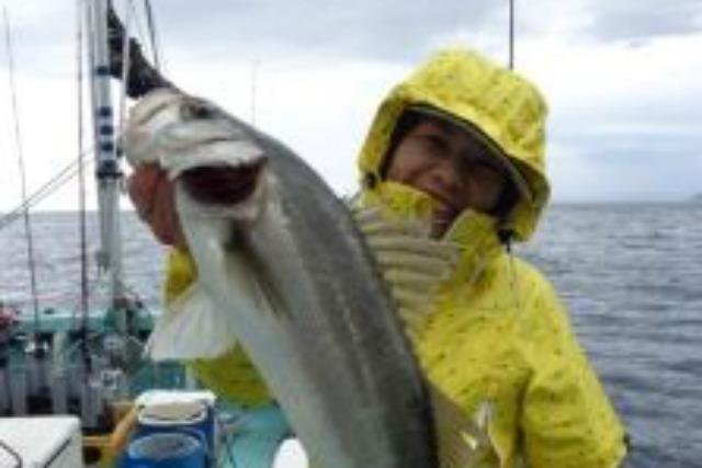【福井・小浜市・釣り体験】日本海を舞台にジギング!高級魚をゲットしよう(乗り合い)