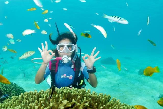 【鹿児島県ヨロン島・ファンダイビング・1ボート】サンゴの海で気軽にダイビング!