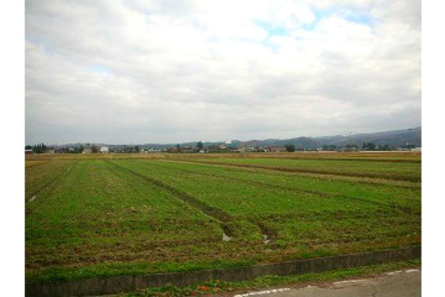 【富山・ガイドツアー】日本の原風景を巡る!となみ野散居村サイクリングツアー