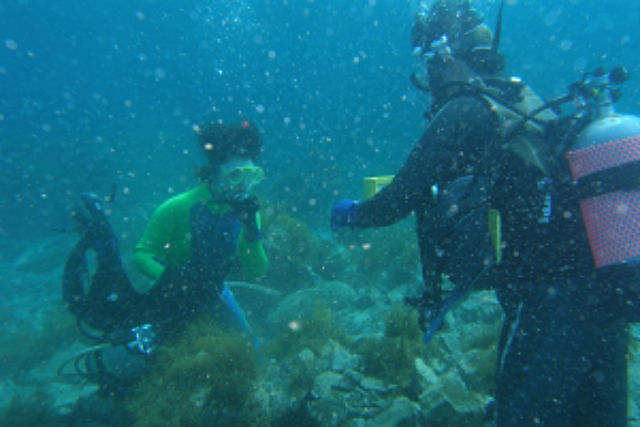 【隠岐の島・ファンダイビング】めずらしい魚に出会う!気軽に1ボートファンダイビング