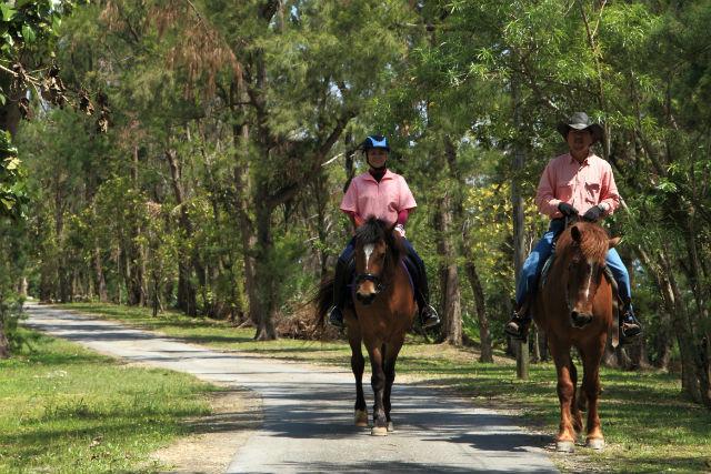 【沖縄県伊江島・乗馬体験】ビーチ&森林お散歩1時間コース