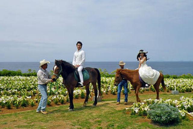 【沖縄県伊江島・乗馬体験】乗馬経験者向け!伊江島で湧出&リリーフィールド公園を巡るコース