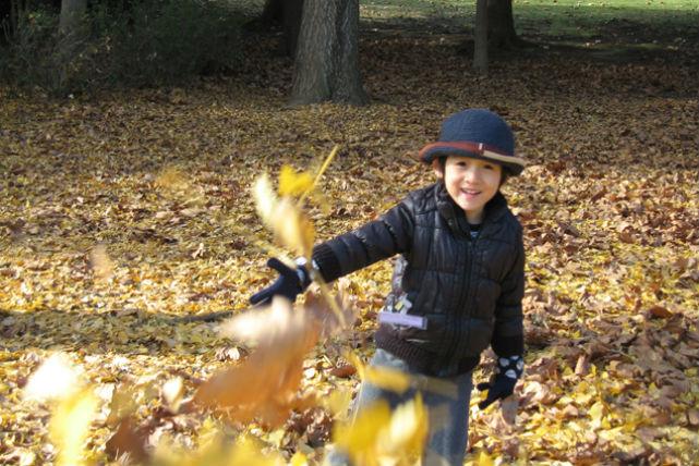 【千葉県・子ども向けガイドツアー】お子さまだけで参加!自然や森の中で思いきり遊ぼう