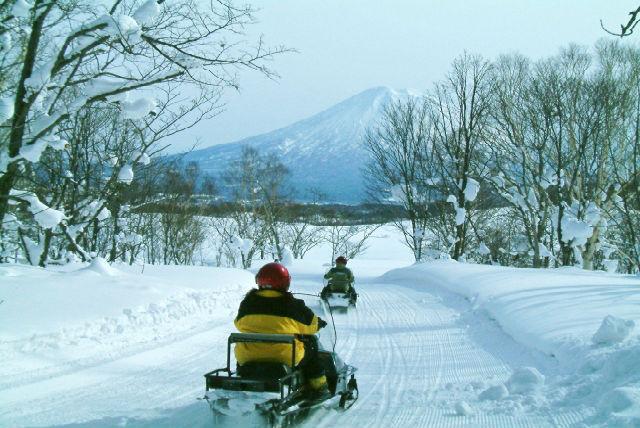 【ニセコ・スノーモービル】樹海をスノーモービルで駆け抜ける!スーパービューコース