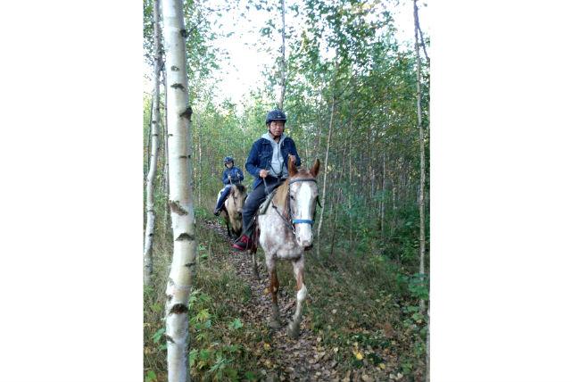 【美瑛・乗馬・10分】ぐるりと景色を巡る、未経験者向き曳き馬体験・ピリカコース