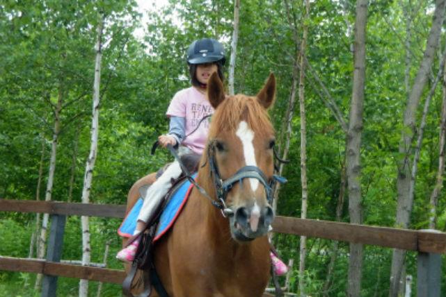【美瑛・乗馬・60分】初心者から気軽にチャレンジ!「丘の町」で乗馬レッスン&外乗プラン