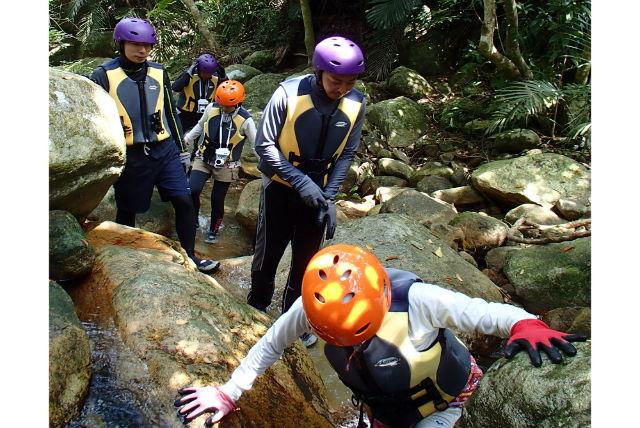 【石垣島・ガイドツアー】神々の庭園を覗きに行こう!ジャングル探検・神秘の滝&青の洞窟