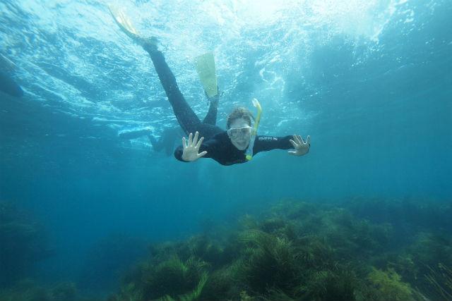 【島根県大田市・スノーケリング】 魚たちの住む世界をのぞいてみよう!
