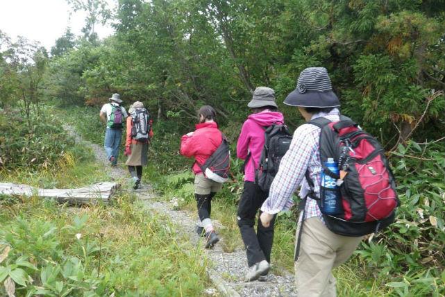 【富山・エコツアー】水たまり3,000面の絶景!湿地高原、弥陀ヶ原を散策しよう