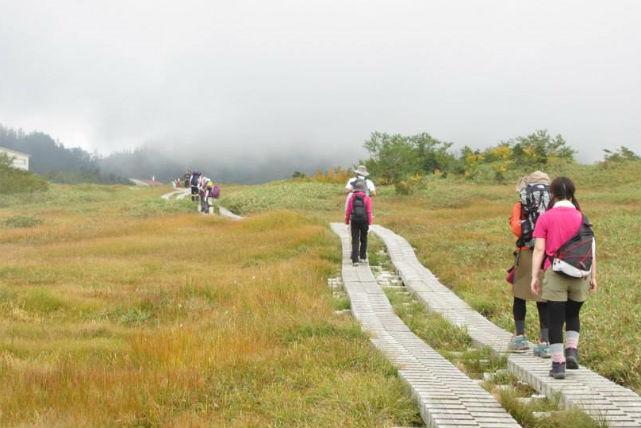 【富山・エコツアー】お散歩気分でらくらく大自然満喫!立山カルデラ展望台と弥陀ヶ原
