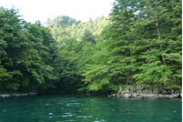 【十和田湖・クルージング】マル秘スポットへご案内!船長おまかせコース