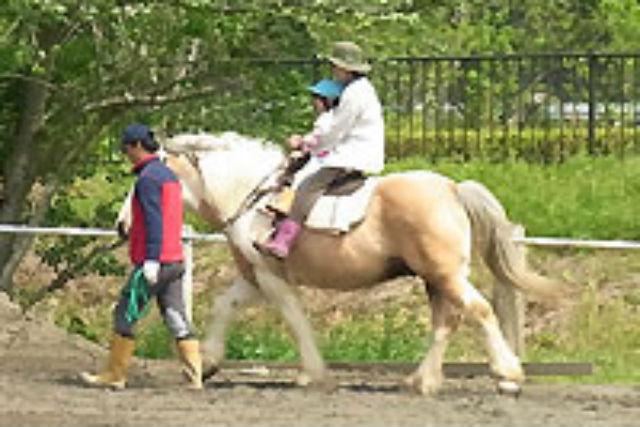 【伊豆・乗馬体験】親子で馬に2人乗り!初心者向け・親子引き馬コース