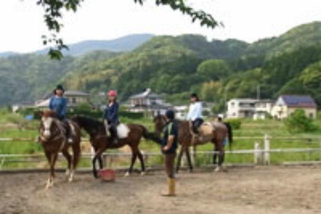 【伊豆・乗馬体験】乗馬の基本動作を身につけよう!初心者向けの馬場レッスン・30分コース