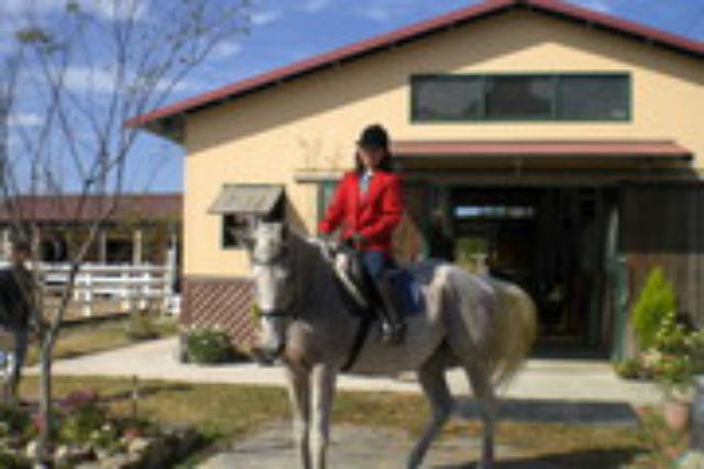 【福岡・北九州市・乗馬体験】気軽に馬に乗れる!引き馬体験