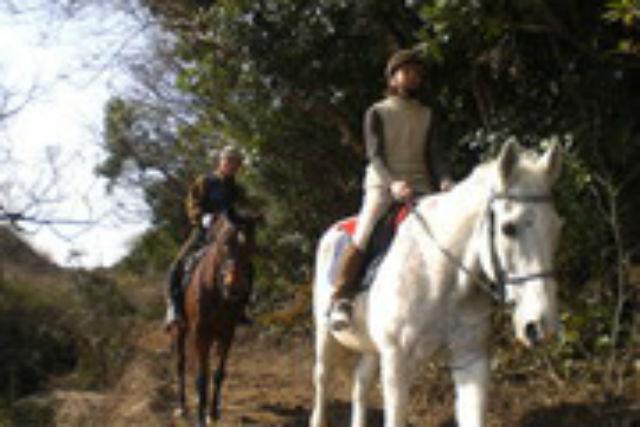 【福岡・北九州市・体験乗馬】しっかり乗馬を学べます!乗馬体験教室・4回コース