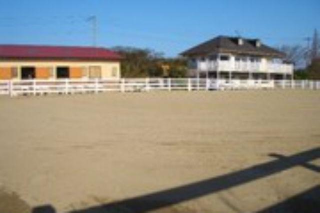 【福岡・北九州市・乗馬ライセンス取得】憧れの乗馬ライセンス!5級取得を目指そう