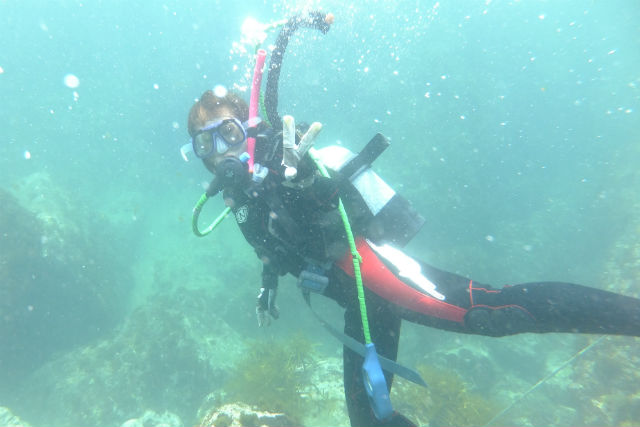 【兵庫県豊岡市・体験ダイビング】日本海に潜って、海中の景色を楽しんでみよう!