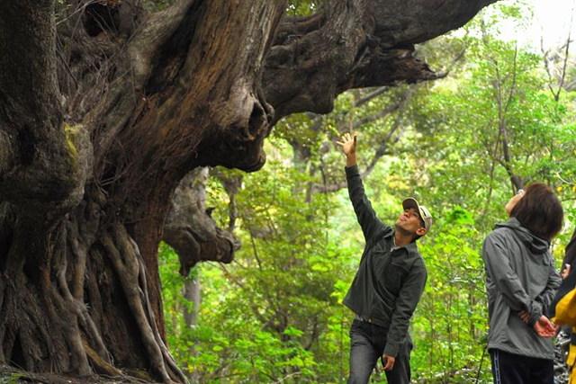 【三宅島・トレッキング】豊かな自然広がる雄山を、1日かけてじっくり贅沢に堪能!
