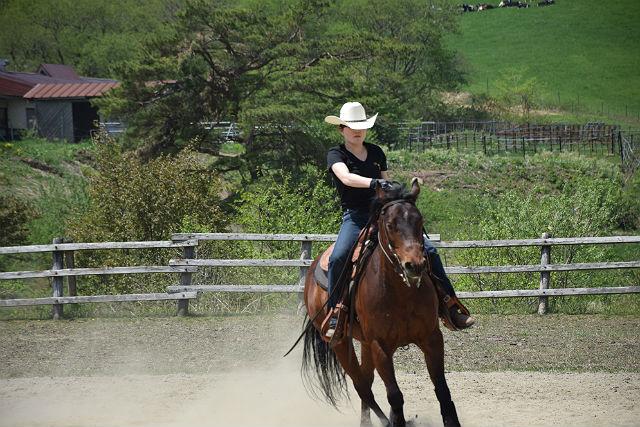 【岩手県・乗馬体験】馬と緑の高原を駆けぬけよう!30分のビジターレッスン