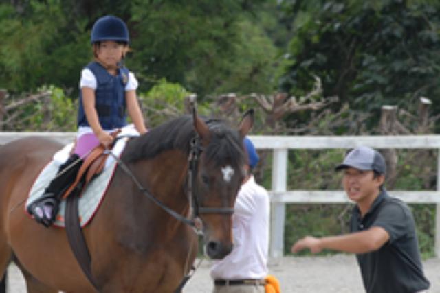 【静岡県東伊豆・乗馬体験】旅の思い出にどうぞ!20分・ショートレッスン