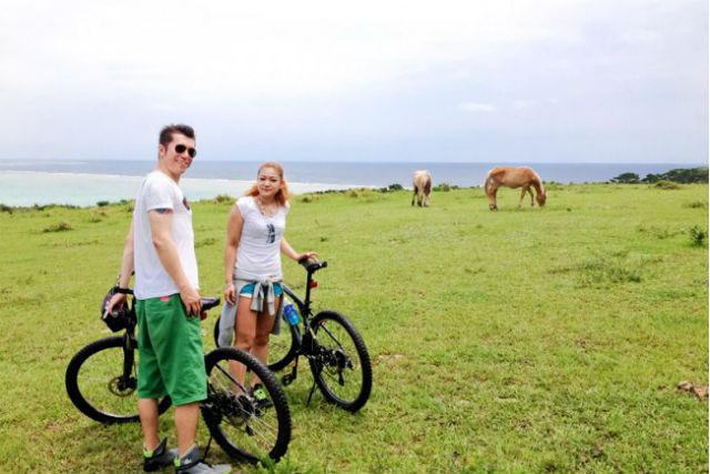 【石垣島・サイクリングツアー】初心者OK!雄大な放牧地を駆ける、ファームライドツアー