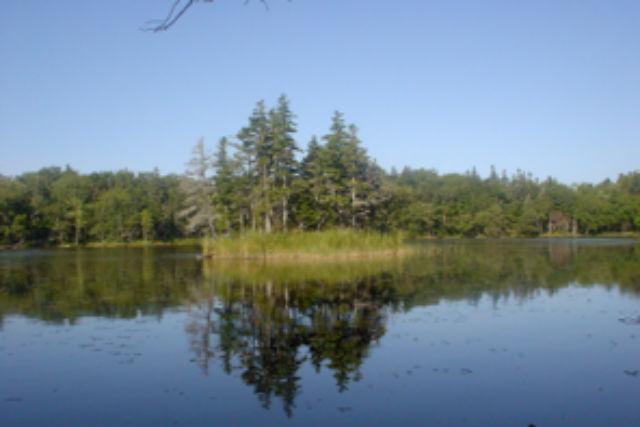 【北海道・知床・トレッキング】5つの湖を巡る!知床五湖ガイドツアー