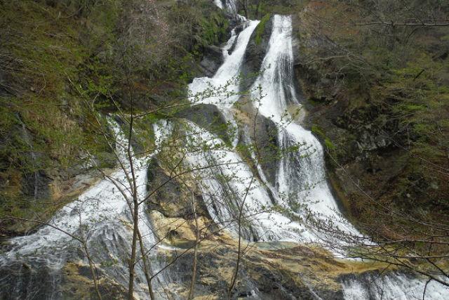 【栃木・日光・シャワークライミング】葛飾北斎が描いた「霧降滝」を見に行こう!