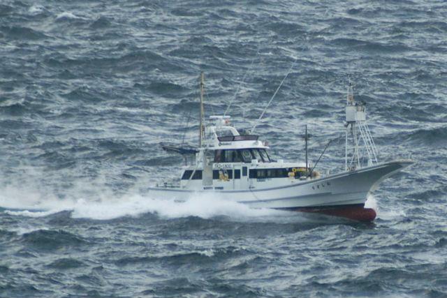 【三宅島・釣り】とっておきのポイントで釣りを楽しめる!船釣りプラン