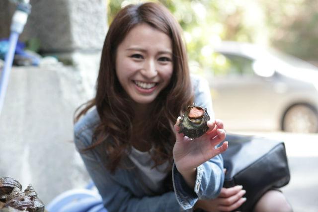 【三重・ガイドツアー】鳥羽の台所・つまみ食いウォーキングデラックス