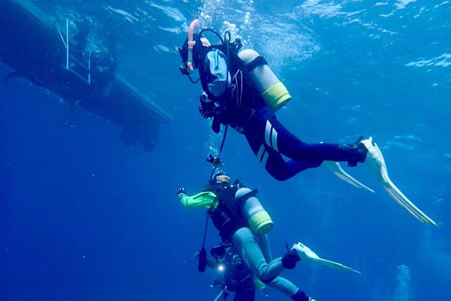【沖縄・ファンダイビング・2ダイブ 】地形派ダイバーにオススメ!西海岸ボート2ダイブ